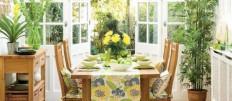 Какие выбрать комнатные цветы для кухни