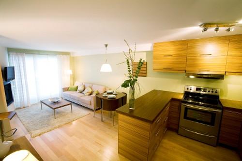 кухня гостиная студия