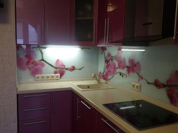 скинали и стеклянные фартуки для кухни (22)