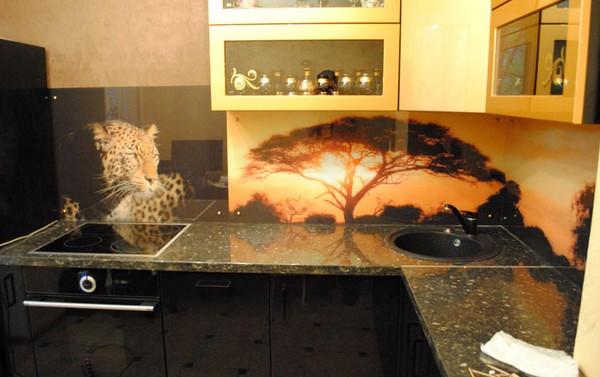 скинали и стеклянные фартуки для кухни (2)