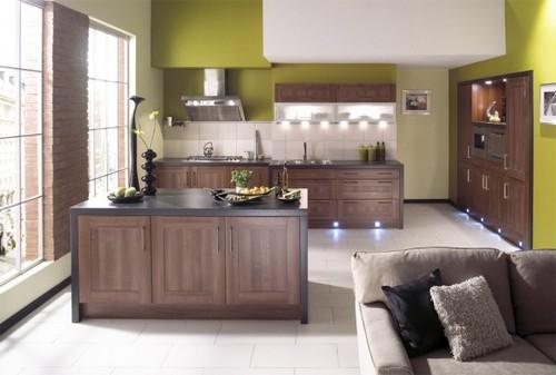 кухня зеленого цвета фото (1)