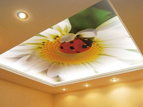 натяжные потолки на кухню фото с рисунком