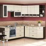 Идеи дизайна: кухня беленый дуб в интерьере
